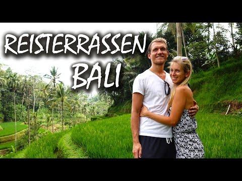 Die Tegalalang Reisterrassen 🌴 Wunderschönes Bali - Backpacking Indonesien   VLOG #99