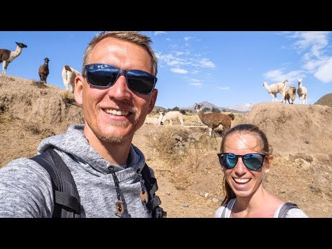 Colca Canyon • DAS Highlight in Peru auf Weltreise | VLOG #452