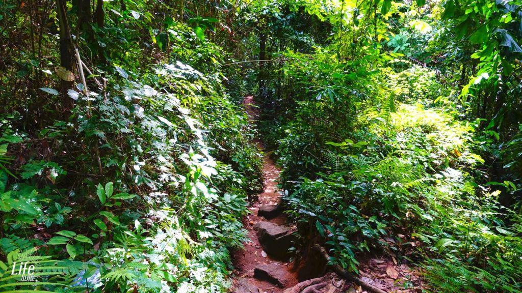 Wasserfall Hin Lad Koh Samui 11