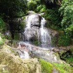 Wilde Tiere und Elefantenreiten in Thailand - 3