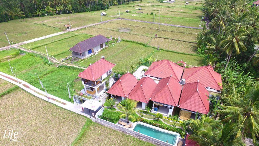 Geniale Unterkunft in Ubud auf Bali - Villa Di Sawah - 3