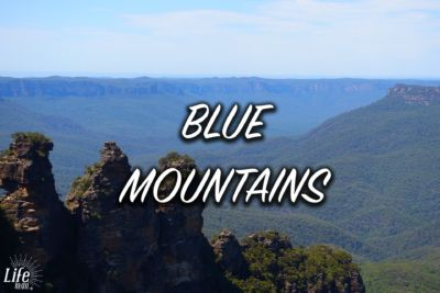 Ausflug in die Blue Mountains - Blue Mountains Tour