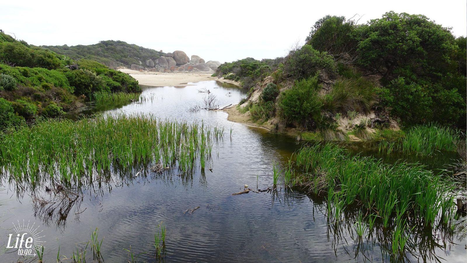 Wilson Promontory Nationalpark Und Weiterreise Nach Melbourne