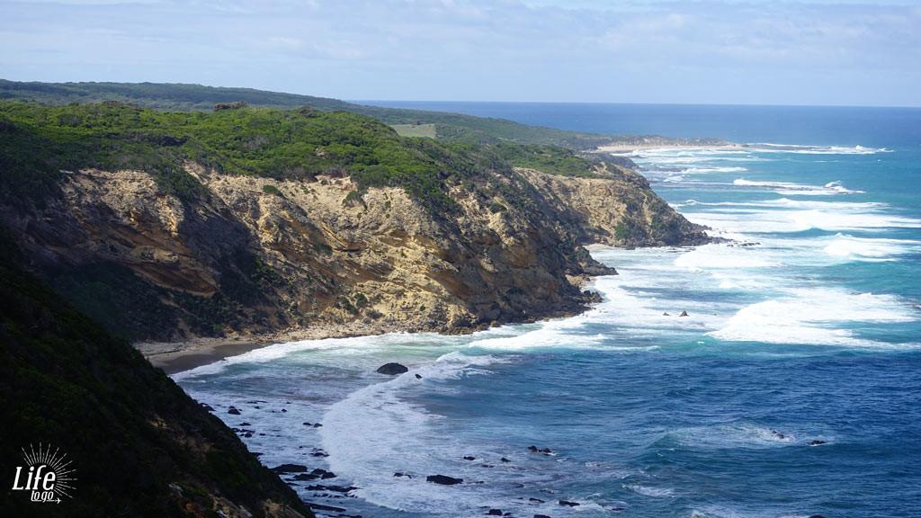 Cliff am Cape Otway Lighthouse - Unsere Highlights von Sydney nach Melbourne