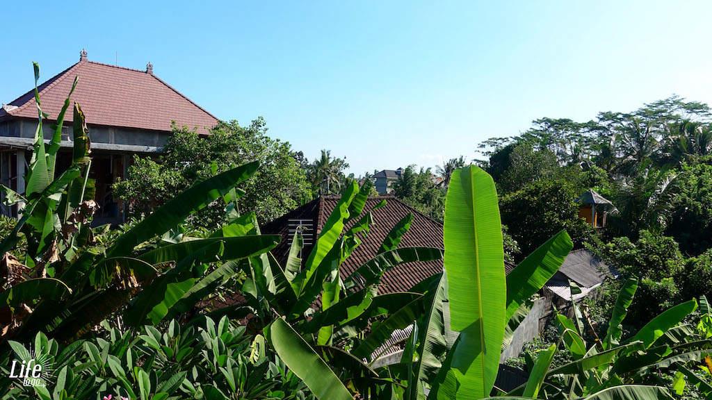 Günstiger Urlaub auf Bali mit Homestay