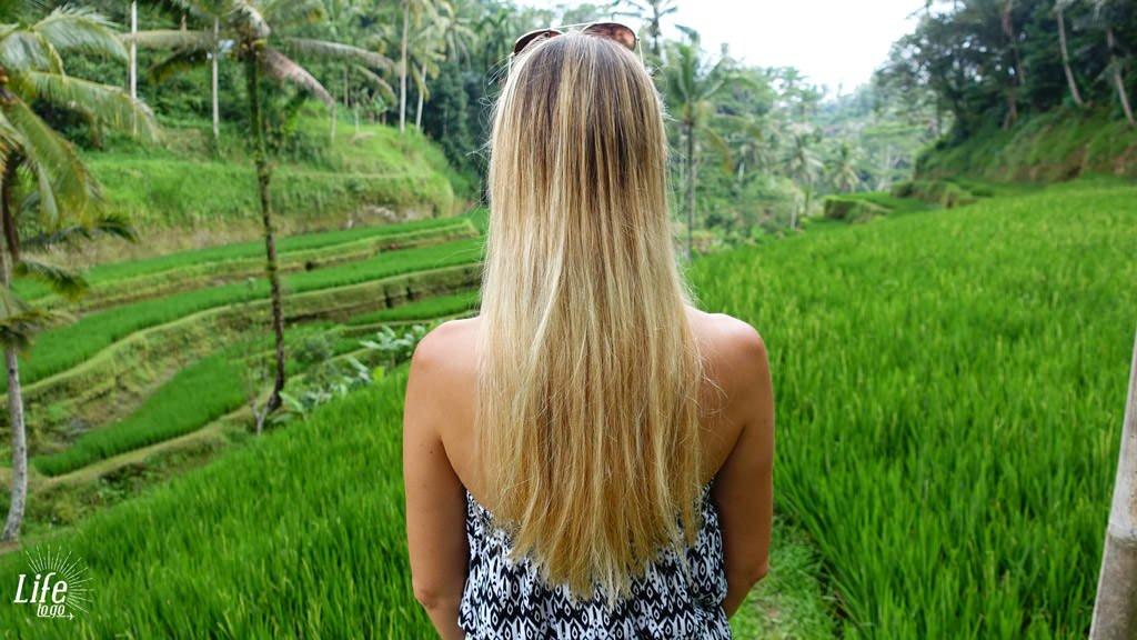 Jessi und Reisterassen - Blogbeitrag über Bali, Reisterassen und Wasserfälle