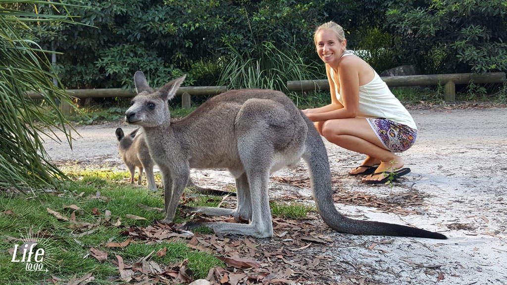 Unsere neuen Freunde in Australien