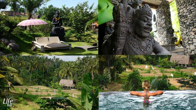 Aussicht, Pool und Anlage im Blue Karma Resort Ubud