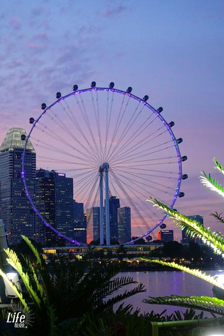Der wundervolle Singapore Flyer