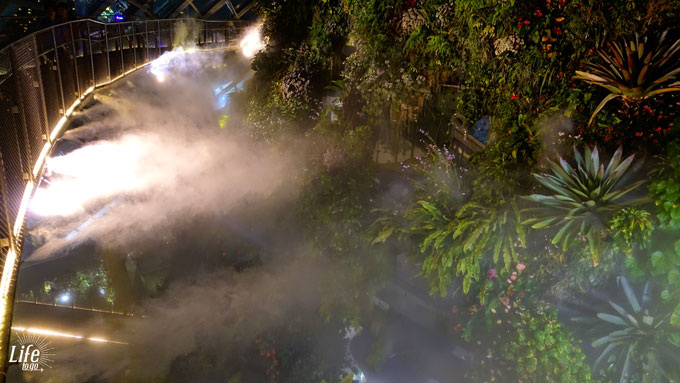 Gardens by the Bay Cloud Forest bei Nacht