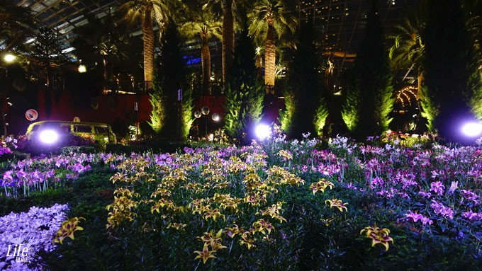 Gardens by the Bay Flower Dome bei Nacht
