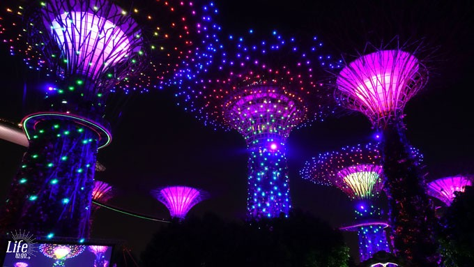 Gardens by the Bay Supertree Garden Rhapsody Lighshow