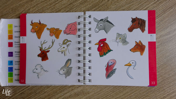 Ohne Wörter Buch Tiere