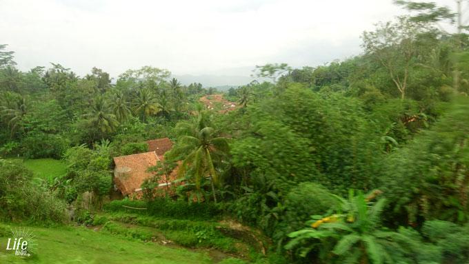 Java Indonesien Blick aus dem Zugfenster in die Natur
