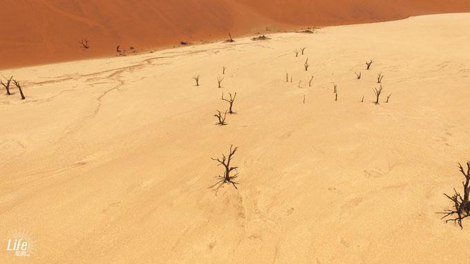 Deadvlei Namibia Drone DJI Phantom
