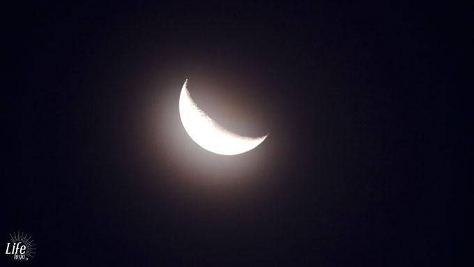 Mond im Etosha Nationalpark