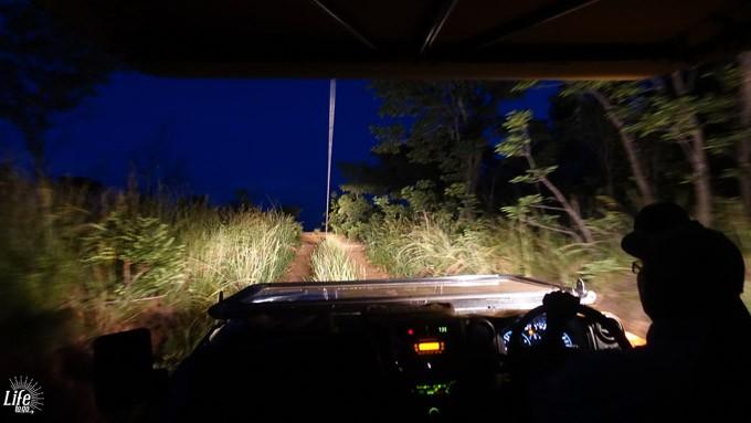Nachtsafari Ekuthuleni Lodge