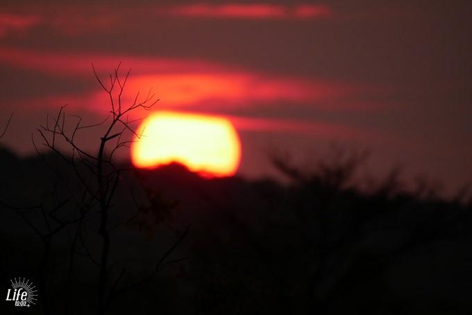 Sonnenuntergang auf Safari Welgevonden Game Reserve