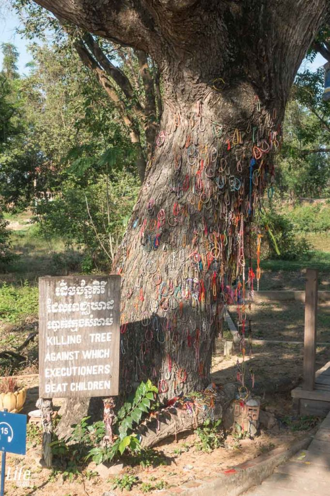 Der Killing Tree auf den Choeung Ek Killing Fields Phnom Penh