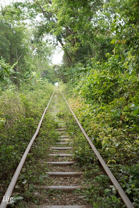 Fahrt mit dem Bambus Zug in Battambang für 5 Euro
