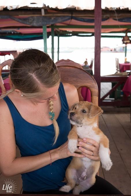 neuer tierischer Freund auf dem Tonle Sap See