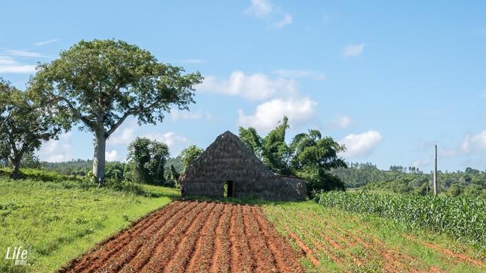 wunderschöne Natur in Vinales auf Kuba