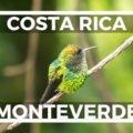 Curi Cancha Reserve Monteverde Blogbeitrag