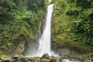 Der ursprüngliche Aquiares Wasserfall in Costa Rica