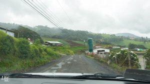 Natur auf dem Weg zum Irazu Vulkan in Costa Rica