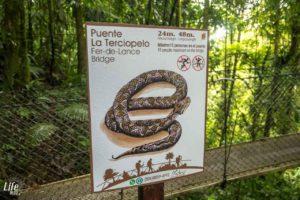 Infotafel Schlange im Mistico Hanging Bridges Park Costa Rica