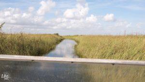 Airboat Fahrt Everglades
