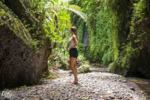 Natur Tukad Cepung Wasserfall - Bali Highlight