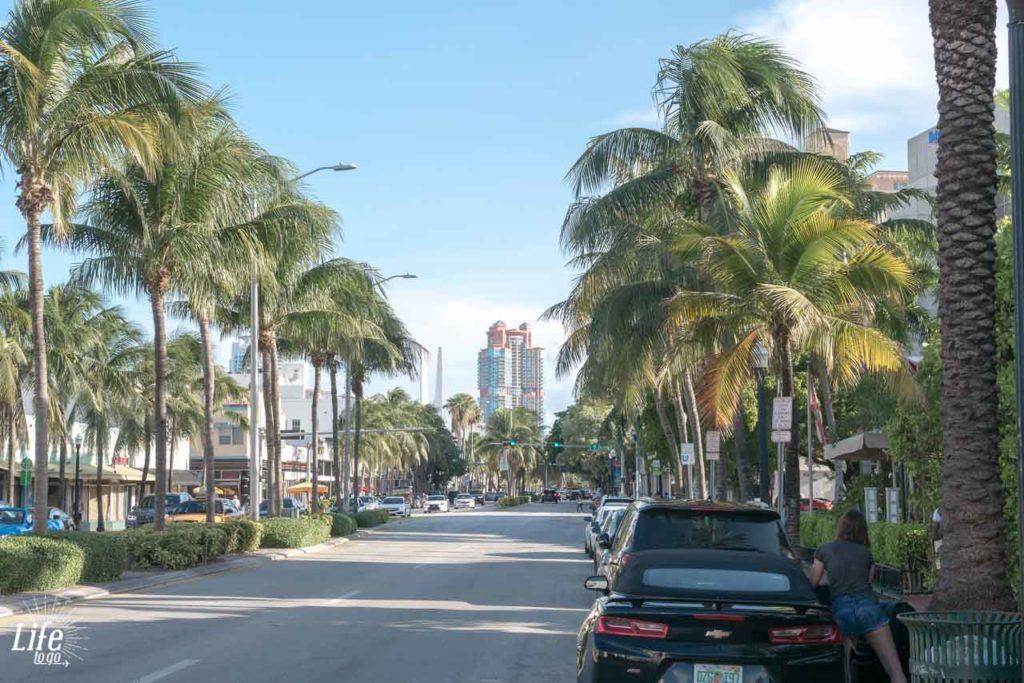 Straße in Miami Beach mit Palmen und Auto
