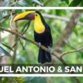 Manuel Antonio - Tukane, Faultiere, Parasailing, Ziplining und San Jose Costa Rica