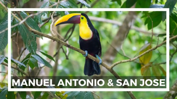 Manuel Antonio Highlights und Reisetipps
