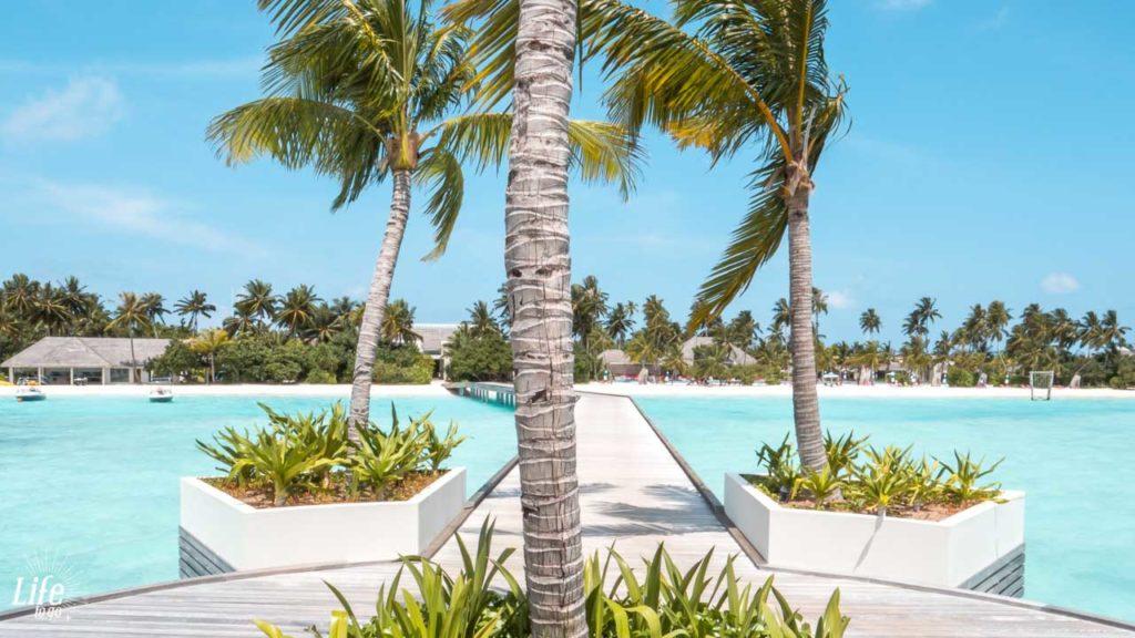 Kandima Resort Anreise