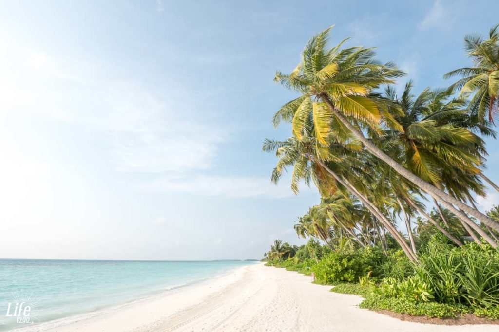 Wilder Strand Malediven Kandima Resort