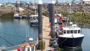 Boote im Howth Hafen