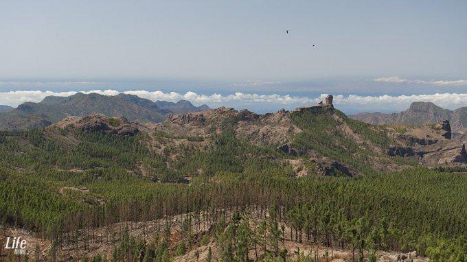 Aussicht Pico de las Nieves