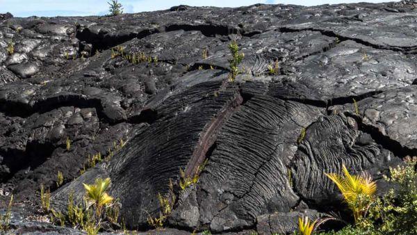 schwarze Vulkan Lava Hilo Black Sand Beach Hawaii