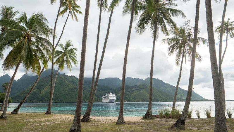 Moorea Ausflug MSC Magnifica World Cruise