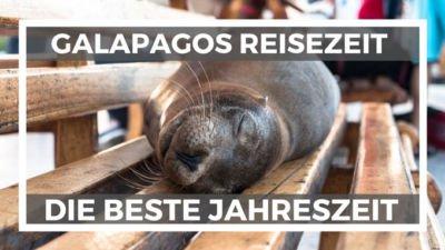 Galapagos Inseln beste Reisezeit