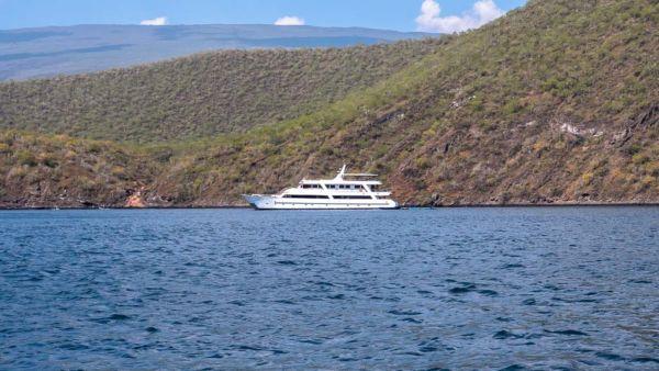 Galapagos Kreuzfahrt Sea Star Journey