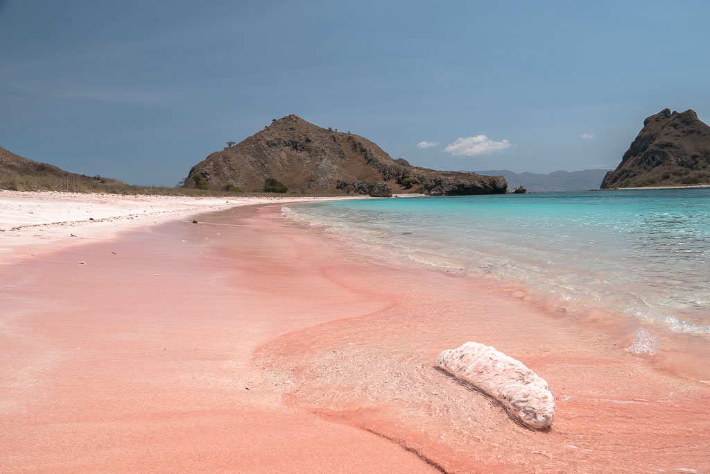 Komodo Nationalpark Tour Pink Beach