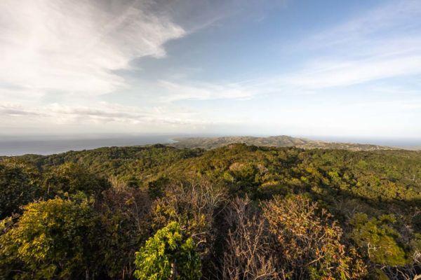 Aussichtspunkt Mt Bandilaan National Park Siquijor Sehenswürdigkeit