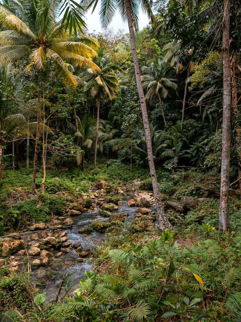 Wanderung Kawasan Falls Natur
