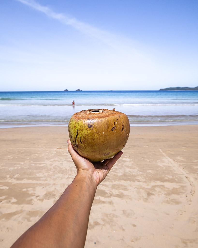 Kokosnuss Nacpan Beach El Nido