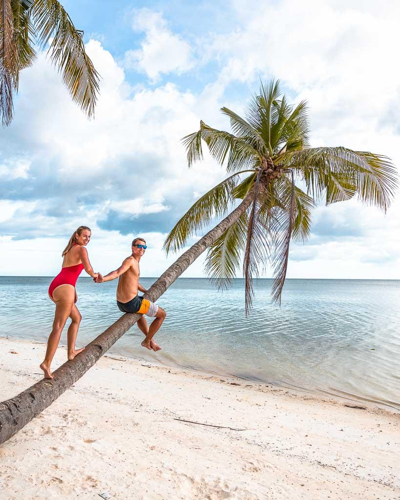 Foto auf Palme Solangon Beach